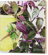 Purple Passion And Dragonfly Pot Wood Print