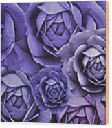 Purple Passion Rose Flower Abstract Wood Print