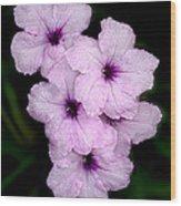Purple Passion Wood Print