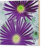 Purple Passion - Photopower 1604 Wood Print