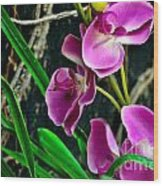 Purple Petals II Wood Print
