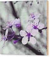 Purple Pink Blossoms Wood Print