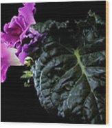 Purple Plant Wood Print