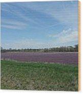 Purple Prairie Wood Print