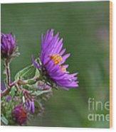 Purple Profiles Wood Print