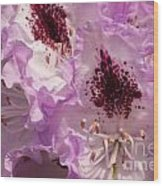 Purple Rhodo Wood Print