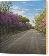 Purple Road Wood Print