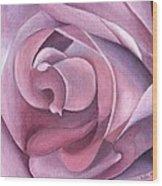 Purple Rose 14-1 Wood Print