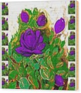 Purple Roses From The Garden 2 Wood Print