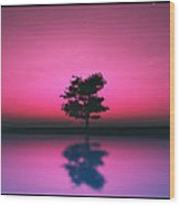 Purple Sky... Wood Print