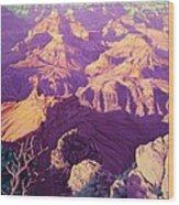 Purple Splendor Wood Print