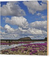 Purple Spring Wood Print