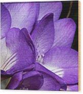 Purple Springtime Wood Print