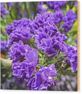 Purple Statice Flower Arrangement Wood Print