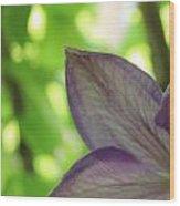 Purple Wood Print by Thomas Leon