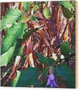 Purple Thorned Blooms In The Cornfield Wood Print