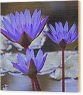 Purple Times Three Wood Print