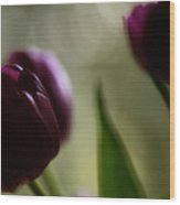 Purple Tulips Dream Wood Print