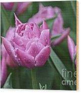 Purple Tulips In The Rain Wood Print
