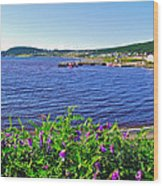Purple Vetch Overlooking Rocky Harbour-nl Wood Print