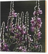 Purple Wild Flowers - 2 Wood Print