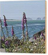 Purple Wildflowers At Netarts Bay Wood Print