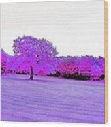 Purple World Wood Print