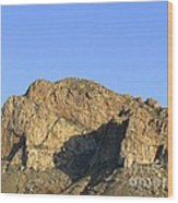 Pusch Ridge With Saguaro Wood Print
