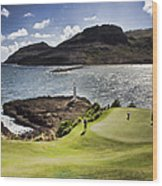 Putting Green In Paradise Wood Print