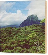 Puu Piei Trail Koolau Mountains Wood Print