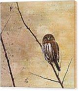 Pygmy Owl - The Watcher Wood Print