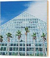 Pyramid, Moody Gardens, Galveston Wood Print