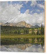 Pyramid Mountain And Cottonwood Slough Wood Print