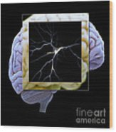Pyramidal Neuron And Brain Wood Print