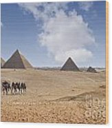 Pyramids Of Giza Wood Print