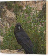 Qouth The Raven Nevermore Wood Print