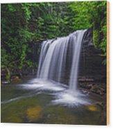 Quadrule Falls Summer Wood Print