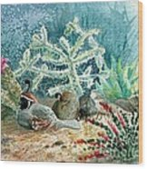 Quail At Rest Wood Print