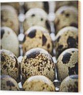 Quail Eggs Wood Print by Elena Elisseeva