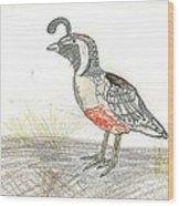 Quail Bird Wood Print