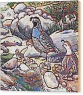 Quail Family Wood Print by Nadi Spencer