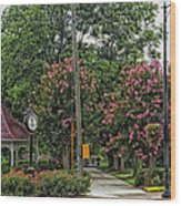 Quaint Park In Demopolis Alabama Wood Print