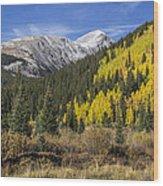 Quandary Peak Wood Print
