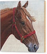 Quarter Horse Wood Print by Randy Follis