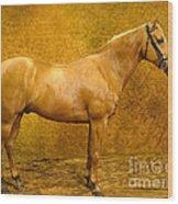 Quarter Horse Wood Print