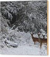 Quartet In The Snow Wood Print