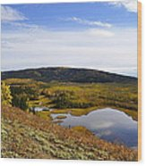 Quartz Lake Recreation Area Wood Print