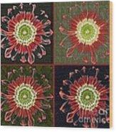 Quatro Floral - 0102cba Wood Print
