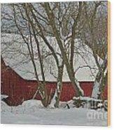 Quebec Winter Wood Print