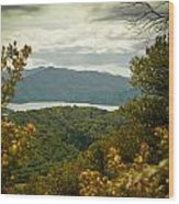 Queen Charlotte Sound Wood Print